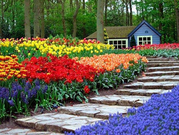 Top 10 Most Beautiful Blooming Gardens In The World